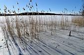 2014 極光之旅:Lake 06.jpg