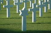 戰爭與和平:DSC_6228_small