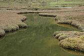 08 松蘿湖:DSC_2477.JPG