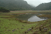 08 松蘿湖:DSC_2483.JPG