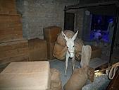 2010杜拜員工團之二:杜拜博物館012.JPG