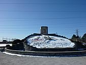 2011冰封尼加拉瀑布:尼加拉花鐘001.JPG