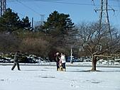 2011冰封尼加拉瀑布:尼加拉花鐘003.JPG