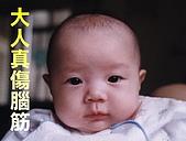 阿梁:baby7.JPG
