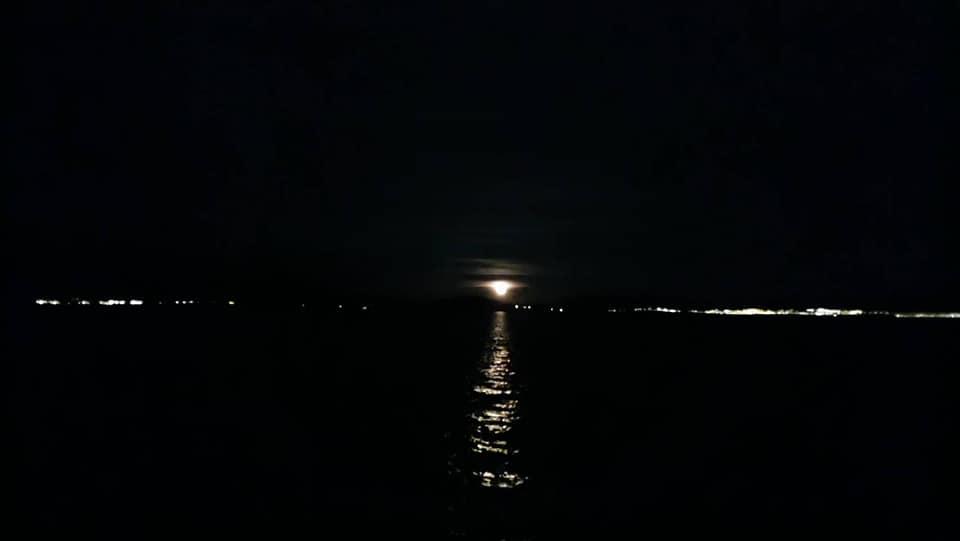 布達佩斯:極光船4.jpg