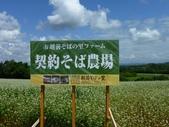 2011夏日繽紛北海道_美瑛富良野Flowerland:美瑛之丘11.jpg