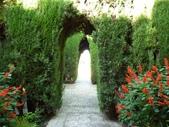2011格拉納達之2_軒尼洛里菲夏宮:格拉納達軒尼洛里菲夏宮103.jpg