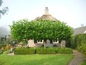 2011年荷蘭羊角村:羊角村056.jpg