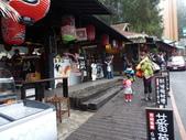 溪頭妖怪村:P1190793.JPG