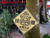 溪頭妖怪村:P1190845.JPG