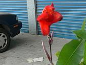 98年5月9日 彰化順安醫院健保單人房三天休養中:P1120445.JPG