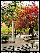 台南東興公園:IMG_0058