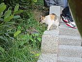 99年花博-圓山園區:IMG_0471.JPG