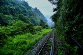平溪線鐵道20190602:0602_CFJ5059.jpg