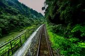 平溪線鐵道20190602:0602_CFJ5236.jpg