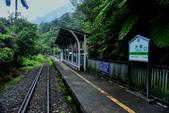平溪線鐵道20190602:0602_CFJ5073.jpg