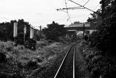 平溪線鐵道20190602:0602_CFJ5013.jpg