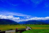 2014台東之旅--伯朗大道:IMG_2085.JPG