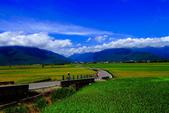2014台東之旅--伯朗大道:IMG_2084.JPG