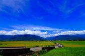 2014台東之旅--伯朗大道:IMG_2086.JPG