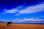 新疆之旅--塞里木湖:IMG_0143.JPG