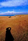 新疆之旅--塞里木湖:IMG_0146.JPG