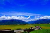2014台東之旅--伯朗大道:IMG_2088.JPG