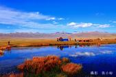 新疆之旅--巴音布魯克--天鵝湖:IMG_9919.jpg