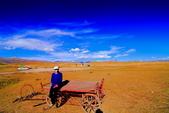 新疆之旅--巴音布魯克--天鵝湖:IMG_9872.JPG