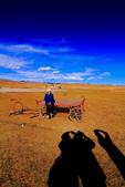 新疆之旅--巴音布魯克--天鵝湖:IMG_9874.JPG