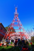 2012迷戀阿里山鐵道櫻花:IMG_7253.JPG