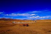 新疆之旅--巴音布魯克--天鵝湖:IMG_9876.JPG