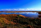 新疆之旅--巴音布魯克--天鵝湖:IMG_9878.JPG