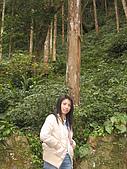2008/2/藤枝一日遊:IMG_0010.JPG