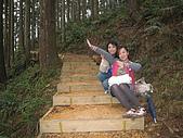 2008/2/藤枝一日遊:IMG_0025.JPG