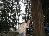2008/2/藤枝一日遊:IMG_0015.JPG