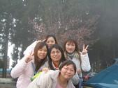 2005二技畢旅-阿里山賞櫻:2005二技畢旅 013