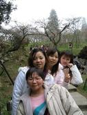 2005二技畢旅-阿里山賞櫻:2005二技畢旅 016