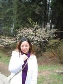 2005二技畢旅-阿里山賞櫻:2005二技畢旅 018