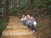 2008/2/藤枝一日遊:IMG_0024.JPG