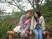 2008/2/藤枝一日遊:IMG_0016.JPG