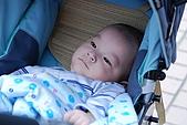 08-10-25帶著士愷和老婆跟阿姨去微風吃飯:DSC_0529.JPG