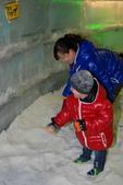 2011-8-17南極北極:DSC_1921.JPG