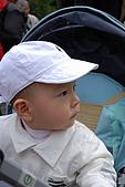 090404台北奧萬大PART1:DSC_0815.jpg