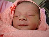 寶寶出生了:DSC03718_調整大小.JPG