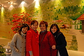 09-1-27西湖渡假村:DSC_0509.jpg