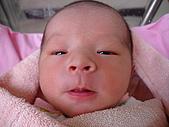 寶寶出生了:DSC03727_調整大小.JPG