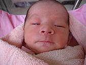 寶寶出生了:DSC03728_調整大小.JPG