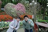 2008-2-13~14台南高雄之旅:DSC_0046.jpg