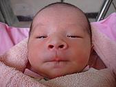 寶寶出生了:DSC03729_調整大小.JPG